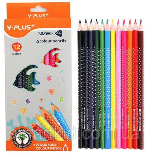 Олівці кольорові, 12кол., трикутні, пласт., з узором, Y-PLUS+