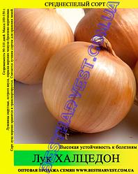 Семена лука «Халцедон» 10 кг (мешок)