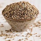 Аджван, Ажгон семена, 20 грамм - противопростудное, для снятия спазмов и колик; укрепляет нервную систему, фото 2