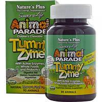 Nature's Plus, Source of Life, Animal Parade, детские жевательные конфеты Tummy Zyme с активными ферментами,