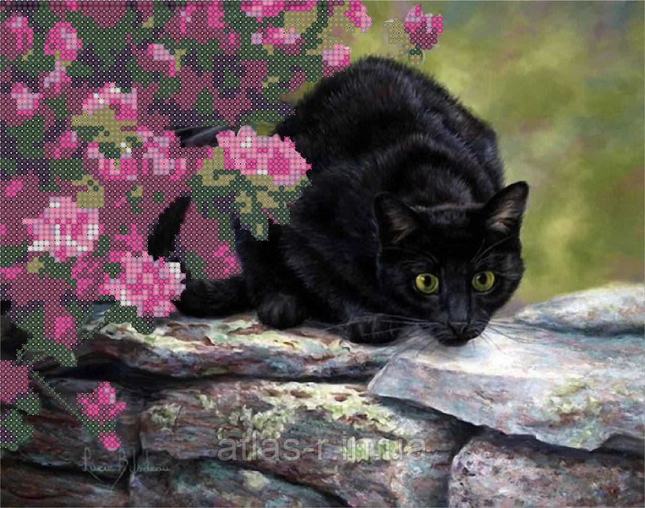 Черный кот вышивка бисером