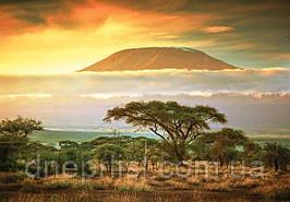 Пазл 1000 элементов / Гора Килиманджаро