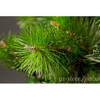 Сосны  натуральный гидролат от GZ 100 мл - тоник, косметический лед, ополаскивание волос
