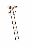 Чердачная лестница Mini Polar Oman H265 100х70