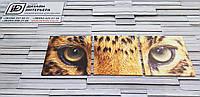 Модульная картина с глазами тигра 35х110 см (35x35-3шт)
