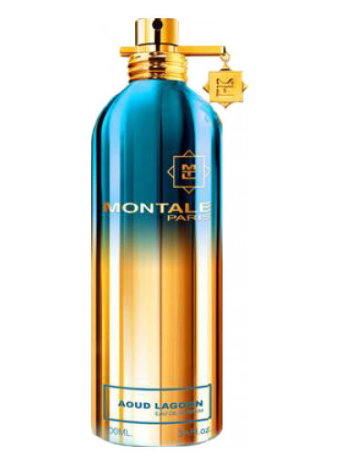 Montale Aoud Lagoon edp 100ml Tester, France