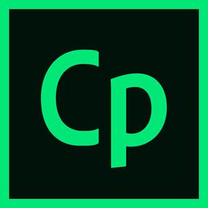 Adobe Captivate 2019 English Для государственных учреждений (65294492AF01A00)