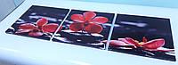 Модульная картина орхидеи на черных камнях 35х110 см (35x35-3шт)