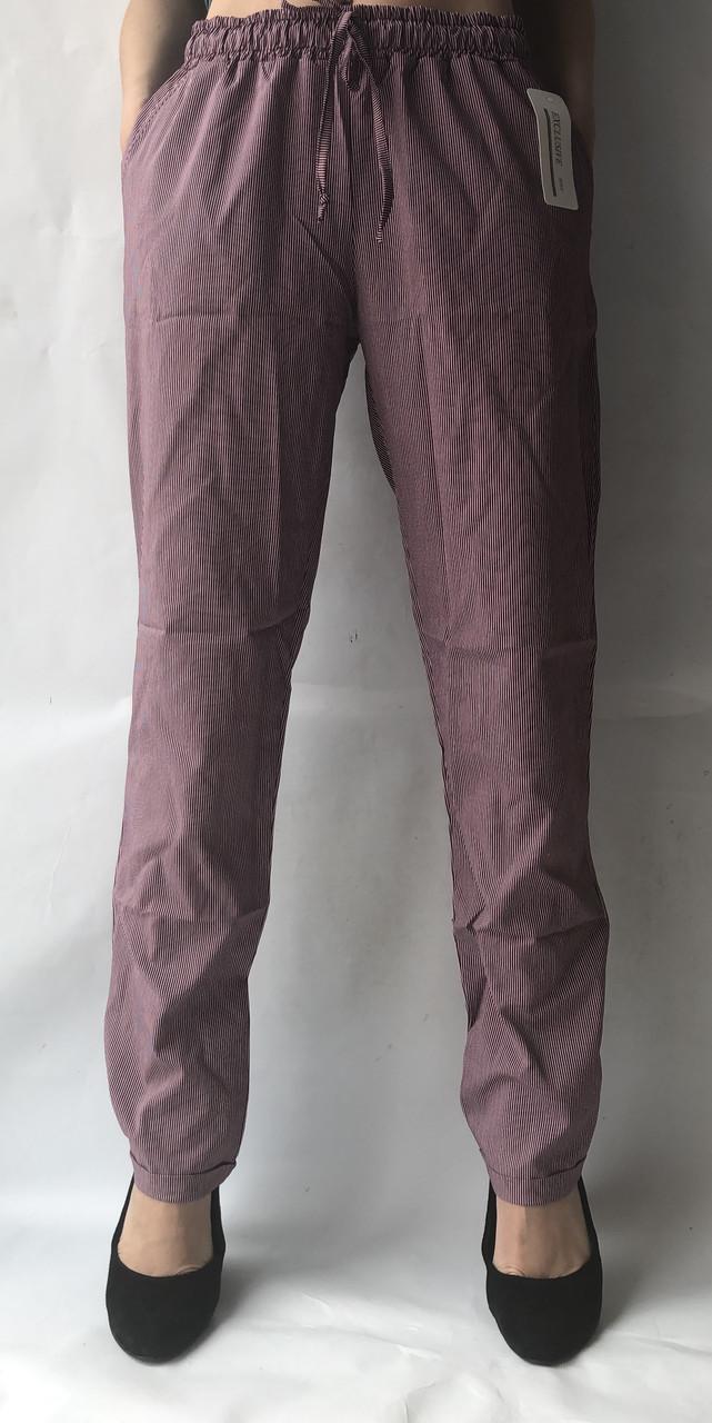 БАТАЛЬНЫЕ летние штаны N°17 Пл. (бордовая)
