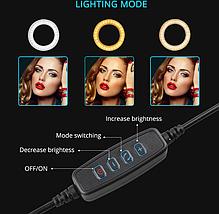 Кільцева лампа для блогерів (12 см. діаметр кільця)+ подвійне кріплення для телефонів, фото 3