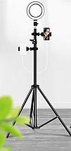 Кільцева лампа для блогерів Puluz (16 см. діаметр) + штатив і кріплення для телефону, фото 2