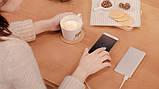 Внешний аккумулятор Xiaomi Mi Power Bank 2 10000 mAh Silver (VXN4182CN), фото 4