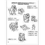 Easy English Легка англійська дітям 4-7 років Авт: Федієнко В. Вигляд: Школа, фото 2