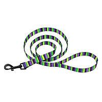 Поводок для Собак  Нейлоновый салатово-фиолетовый рисунок Полоска