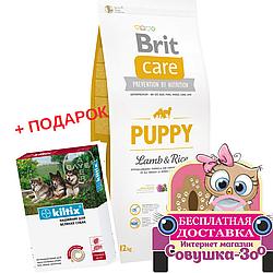 Корм Brit Care Puppy Lamb and Rice Бріт Кеа Папі для цуценят з ягням і рисом 12 кг