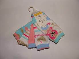 Носочки для новорожденных Primark 6-12мес.