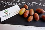Дуб черешчатый семена (20шт) (дуб обыкновенный или английский) для саженцев насіння для саджанців, фото 3