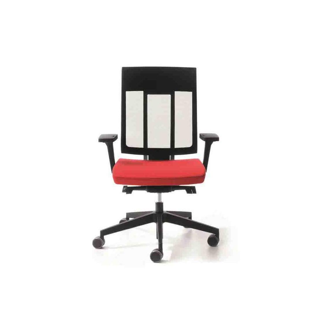 Эргономичное кресло Xenon net