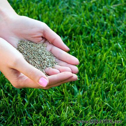 """Універсальне насіння газонної трави """"Гектар"""" (Білорусь), фото 2"""