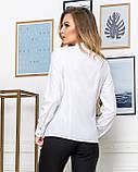 Молодежная классическая блуза норма с длинным рукавом на пуговицах, пять цветов р.42,44,46,48 код 444А, фото 8