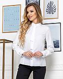 Молодежная классическая блуза норма с длинным рукавом на пуговицах, пять цветов р.42,44,46,48 код 444А, фото 7