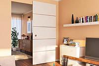Комплект фурнітури Hafele DESIGN 80-M для 1-ого дверного полотна до 80 кг, з ходовою шиною алюміній