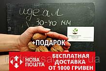 """Семена грецкий орех сорт """"Идеал"""" (10 штук калибр 30-40 мм) на саженцы + инструкции + подарок"""