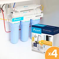 Річний запас картриджів для фільтра зворотного осмосу Ecosoft (без мінералізатора) (Absolute-12)