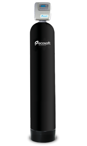 Фільтр для видалення сірководню Ecosoft FPC 1665 CT (FPC1665CT)