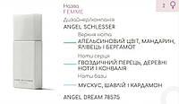 Концентрат ANGEL DREAM (100гр) (Альтернатива Angel Schlesser Femme)