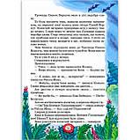 Дивовижні пригоди в лісовій школі Книга 1 Сонце серед ночі Пригоди в Павутинії Авт: Нестайко В. Вид: Школа, фото 5