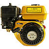 Бензиновый двигатель Forte F210GT-25 : 210 см3 | 25 мм Вал, фото 2