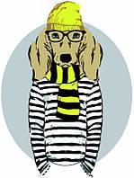 Картина по номерам Stylish Dog