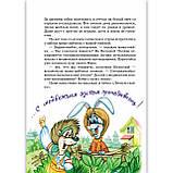 Удивительные приключения в лесной школе Книга 1 Солнце среди ночи Авт: Нестайко В. Изд: Школа, фото 2