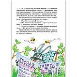 Удивительные приключения в лесной школе Книга 1 Солнце среди ночи Авт: Нестайко В. Изд: Школа, фото 3