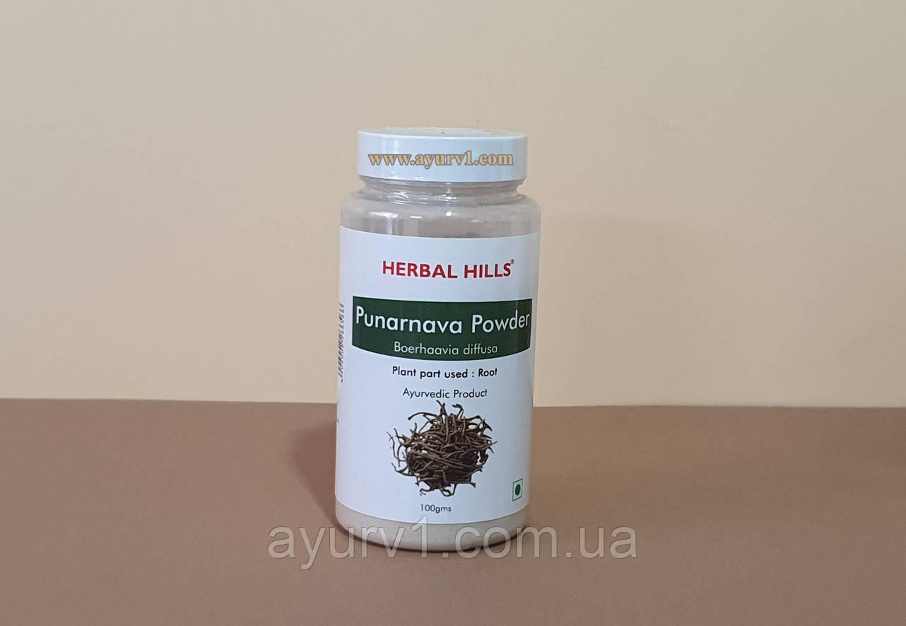 Пунарнава Мандур / Punarnava Mandoor Churna / 100 g