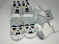Детские носочки, 5 пар в наборе