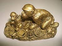 Обезьяны сидят на монетах