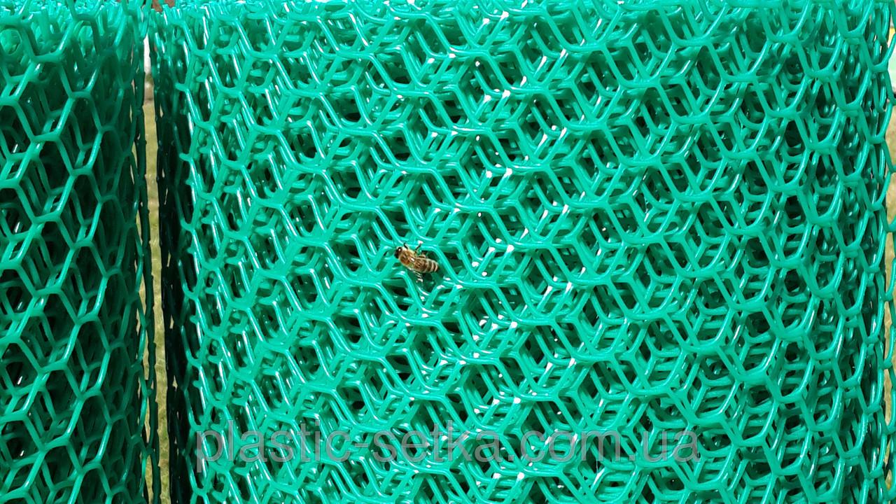 Пластикова сітка осередок 1.9*1.9 см сота 1,5 м