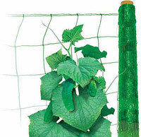 """Огіркова сітка """"Intermas"""" зелена 1,7*350м"""