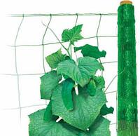 Огуречная сетка зеленая 1,7*250м