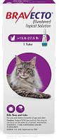 Капли Bravecto (от блох и клещей на 12 недель) для котов весом 6.25-12.5кг
