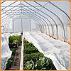 Агроволокно  пакетированное 50 г/м² белое 3.2х5 метров, фото 8