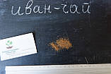 Иван-чай семена 20 шт (кипрей узколистный копорский) насіння Chamaenérion angustifolium + подарок, фото 3