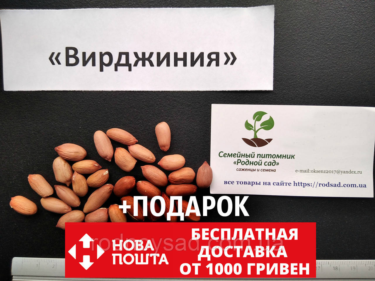 """Арахис сорт """"Вирджиния"""" семена (20 шт) земляной орех семена на посадку насіння арахіс земляний горіх"""