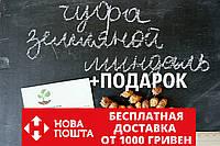 Чуфа семена (земляной орех миндаль, сыть, тигровый орех, зимовник) (100шт)  горіх мигдаль насіння + инструкция, фото 1