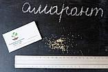 """Амарант сорт """"Харьковский-1"""" семена 20 грамм (около 10 000 штук), фото 4"""