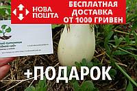 Баклажан белый семена (20 шт), насіння + инструкция + подарок