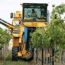 Виноградоуборочная техника