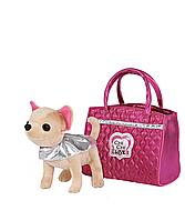 Собачка Чихуахуа Модный Гламур